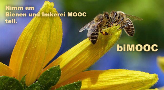 Einladung zum Bienen und Imkerei MOOC